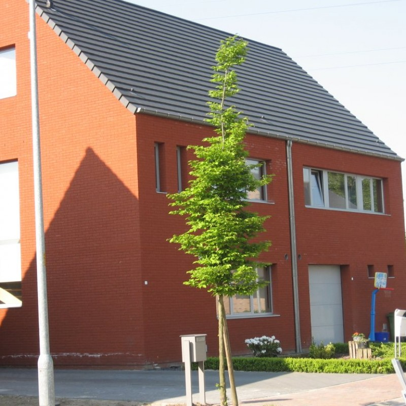 2 maisons - Beerse